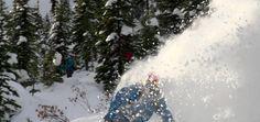 Location: Snowwater Heliskiing Photo: www.Scottmartin.org www.HeliskiingCanada.org #heliskiing #heliskiing  www.HeliskiingCanada.tv #heliboarding #skiing #snowboarding