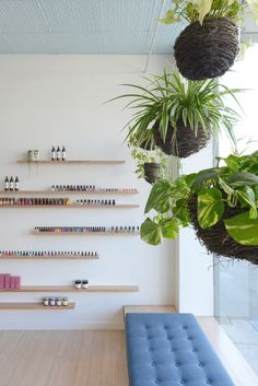 simple wood shelving and hanging plants