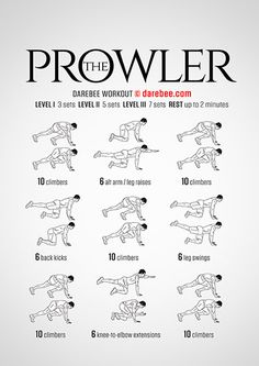 The Prowler  Workout | Posted by: AdvancedWeightLossTips.com