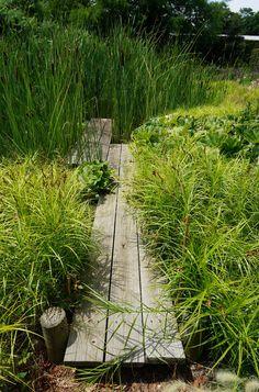 Landscape Focused: landscape, garden design ideas — Landcraft Environments, Mattituck, NY / More.