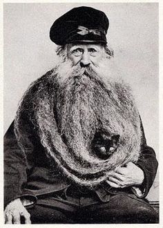 Bearded cat.