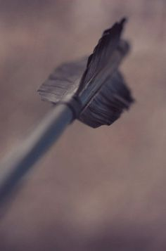 This would not be ok if this was sticking out of my chest. Dies wäre nicht in Ordnung, wenn dies aus meiner Brust ragte. Narnia, Dark Souls, Varric Tethras, Hawke Dragon Age, Artemis Crock, Spirit Fanfic, Robin Hood, Elf Ranger, Rangers Apprentice