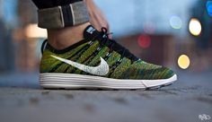 Nike Lunar Flyknit HTM Trainer