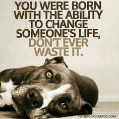 You can change a life