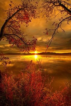 Mother Nature's Son by Phil Koch on 500px