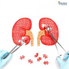 Contact our team at Jaypee Healthcare for all kidney problems in Noida. Book an online appointment today with our experts for best diagnosis and treatment for all health problems in Delhi NCR, India.
