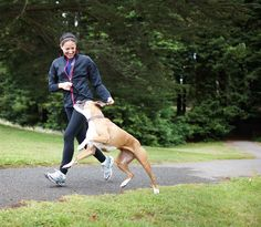 Running with your dog is a great from of exercise for both you and your pooch. With these tips, you'll turn your pooch into the perfect running partner. Baby Puppies, Cute Puppies, Fitness Tracker, Fitness Goals, Fitbit One, Sweat Proof, Running Tips, Big Dogs, Dog Walking