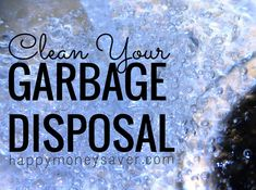 Thrifty Tip: Clean Your Garbage Disposal - Happy Money Saver Household Cleaners, Household Tips, Shower Cleaner, Natural Cleaners, Clean Freak, Cleaners Homemade, Green Cleaning, Natural Cleaning Products, Found Out
