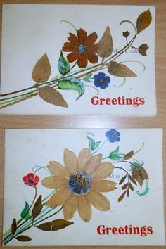 The Craft Gallery : Pressed Flowers - Greeting Cards - Part 1