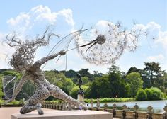 Робин Вайт (Великобритания) -скульптуры из проволоки танец с одуванчиками