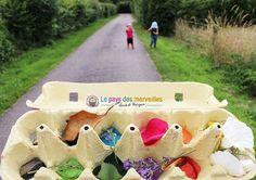 Chasse aux couleurs dans la nature avec une boite à oeufs. Activité recup' Montessori