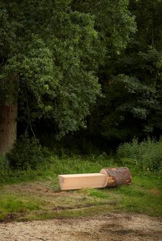 Tree Furniture (how they made this with photos)