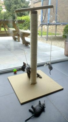 Cats Toys Ideas - DIY scratching post. They love it. Especially the little mouses (made from some old socks) that turn around when playing. - Ideal toys for small cats #cattree #catsdiyideas