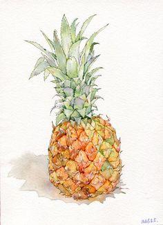 温泽小清新水果菠萝手绘水彩画教程