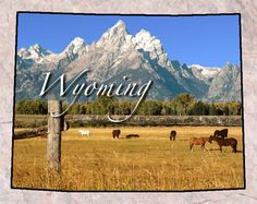 Definitely a place to live the simple life.. If you haven't been out West Wyoming is pretty beautiful.. freezing cold in the winters though! ;)