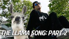 THE LLAMA SONG: PART 2 - YouTube