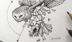 Artist Creates Extraordinary Geometric Animal Illustrations