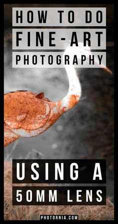 How to do fine-art photography using a lens, guide - Photography, Landscape photography, Photography tips Photography Cheat Sheets, Photography Basics, Photography Lessons, Photography For Beginners, Dance Photography, Photography Tutorials, Creative Photography, Digital Photography, Fine Art Photography