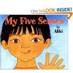 Introducing the Five Senses!
