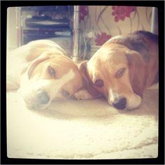 Benjy and Deefa