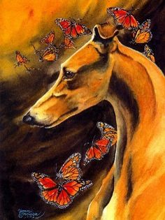 Graceful Monarchs