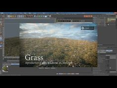 Reproduction of grass in Cinema 4d, MoGraph, Octane render - YouTube