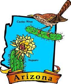Cactus Wren & Saguaro Cactus