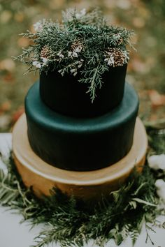 Moody Winter Wedding Cake Topper With Evergreens And Herbs – Wedding Cakes Copper Wedding Cake, Black Wedding Cakes, Floral Wedding Cakes, Fall Wedding Cakes, Floral Cake, Wedding Cake Designs, Wedding Cake Toppers, Autumn Wedding, Gold Wedding