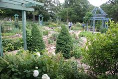 Jim Long's garden at his Long Creek Herb Farm in northern Arkansas is always a treat!