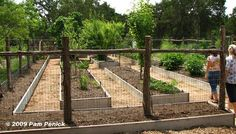 Veggie garden fence idea