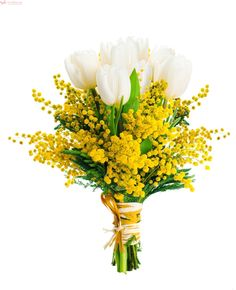white tulips and mimosas (Mixed Flowers) - Sending, Delivery, Give Mixed Flowers in Italy. Exotic Flowers, Tropical Flowers, Beautiful Flowers, Spring Flower Bouquet, Spring Flowers, Mimosas, Pansies, Daffodils, White Tulips