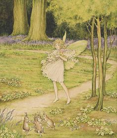 Fairy by Ida Rentoul Outhwaite, also known as Ida Sherbourne Rentoul and Ida Sherbourne Outhwaite June 1888 – 25 June was an Australian illustrator. Fairy Pictures, Vintage Fairies, Beautiful Fairies, All Nature, Australian Art, Flower Fairies, Fairy Art, Magical Creatures, Woodland Creatures