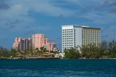 Looking for some great Bahamas All Inclusive Resorts? Here are the 5 star, 4 star and 3 star all inclusives in the Bahamas. Bahamas All Inclusive, Bahamas Resorts, Paradise Island, New York Skyline, Skyscraper, Travel, Skyscrapers, Viajes, Destinations