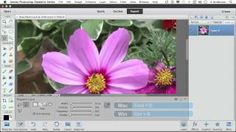 The Magnetic Lasso Tool in Photoshop