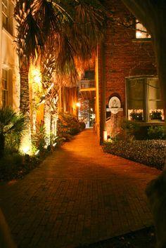 "Night time. Illuminated Palmetto Trees ""Fulton Lane Inn202 King Street"""