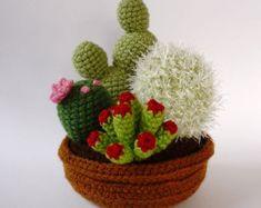 Jardín de 4 plantas de cactus y suculentas de ganchillo realista