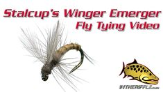 Stalcup's Winger Emerger Fly Tying Video Insttructions