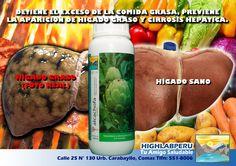 EXTRACTO CONCENTRADO DE ALCACHOFA (500ml) S/.30 Tonificante natural de la sangre, permite la quema natural de la glucosa en energia (hipoglucemiante). Usado para combatir la anemia y debilidad. Contiene inulina (azucar no metabolizable) en vez de fecula, ideal para dietas reductoras y de mantenimiento corporal. Util en casos de diabetes.