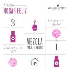Mezcla: Hogar Feliz - Tatiana Orellana