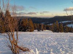 5 der schönsten Ausflugsziele im Schwarzwald im Winter - Familien-Reiseblog Travelsanne Seen In Baden Württemberg, Winter, Snow, Mountains, Nature, Travel, Outdoor, Black Forest, Karlsruhe