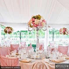 lovin' the colors in this picture. especially the centerpiece!