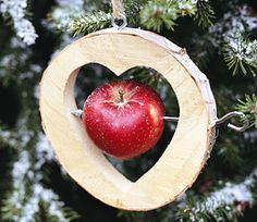 Tipps für grüne Weihnachten. Umweltfreundlich Weihnachten feiern. Mom... this would be cute hanging from your trees outside for the winter birdies! aka: Mabel & Lucy