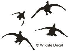 Details about  /Duck Mallard Flying Decal Sticker Choose Color Size #1313