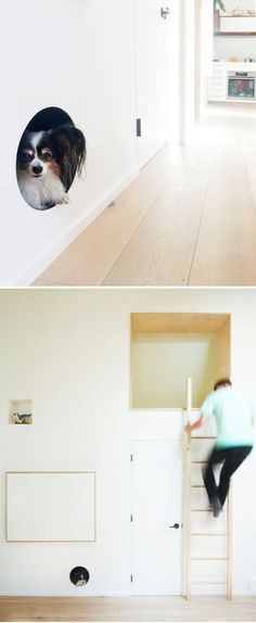 This modern laneway house has a built-in dog bed nook that's been built into the wall and allows the family pet to feel safe, and removes the need for a dog bed on the floor. #BuiltInDogBed #DogBed #InteriorDesign
