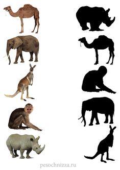 Preschool Jobs, Shape Worksheets For Preschool, Farm Animals Preschool, Animal Worksheets, Preschool Learning Activities, Animal Activities, Infant Activities, Zoo Animals, Animal Movement