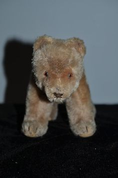Vintage Teddy Bear on Fours Mohair and Collar Adorable Doll Friend