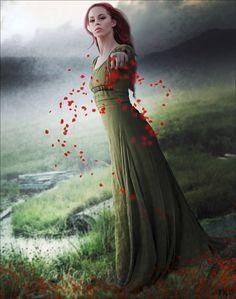 Storm of Petals