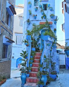 Chefchaouen The Blue Pearl, Morocco - Which City to Travel Beautiful Streets, Beautiful Buildings, Beautiful Landscapes, Beautiful Places, Places Around The World, Travel Around The World, Around The Worlds, Places To Travel, Places To Go