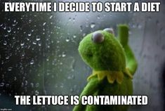 Are Kermit and I the only one with these problems? Ill see yall in the comments for the working mans counseling session. Might even give away some shirts. Meme inspired and adapted from . Funny Quotes, Funny Memes, Funny Cartoons, Random Quotes, Memes Humor, Quotable Quotes, Def Not, Sometimes I Wonder, Frases Humor
