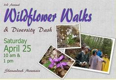 Enjoy an educational and enjoyable field trip with the Headwaters Chapter of the Virginia Master Naturalists. Visit jmu.edu/arboretum for information.